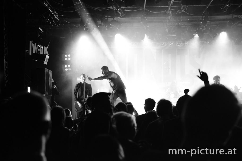 Donots live in Wien 07.03.2018